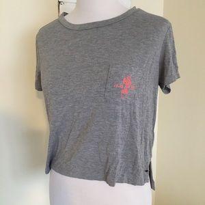 AE Cactus Hug Me Crop Pocket Tee Shirt Grey